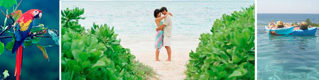 costa rica destination wedding and honeymoon packages